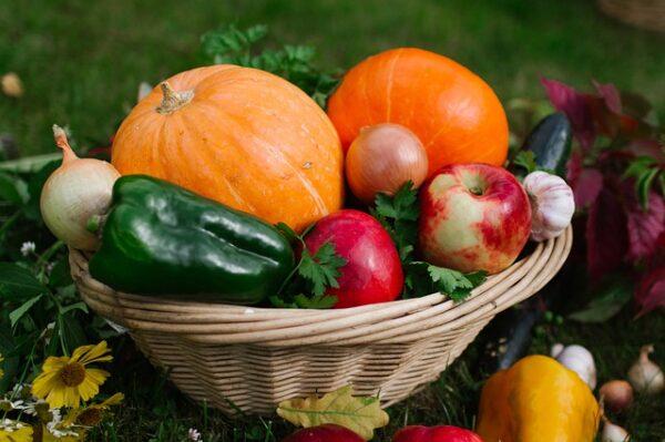 Panier Légumes 2